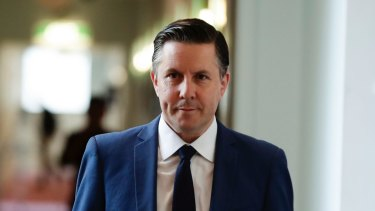 Shadow Environment Minister Mark Butler.