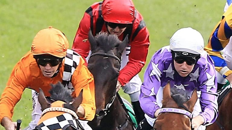 Go west: a seven-race card is scheduled for Orange on Tuesday.