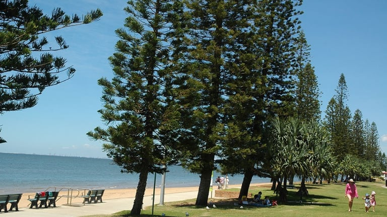 Redcliffe Dog Park