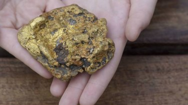 The 20-ounce gold nugget found on the weekend.