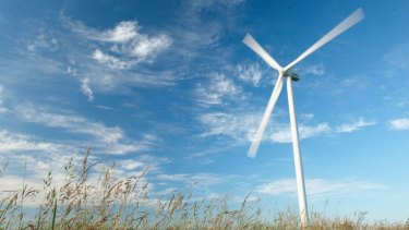 Wind farms are a form of renewable energy and the green economy.