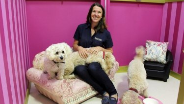 Margaret Hennessy is the owner of dog boutique and grooming franchise Dogue.