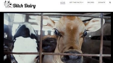 The Ditch Dairy website tells people to cut dairy products from their diet due to the alleged cruelty to cows.