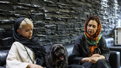 More bark than bite in Iran's ban on dogs