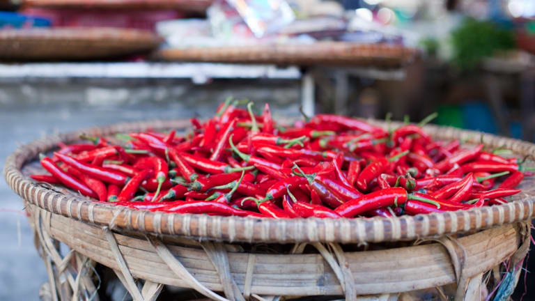 """The heat is on: Kay Maguire has written a beginner's guide to """"planting, picking and preserving"""" chillies."""
