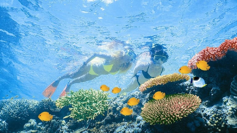 Some 64,000 jobs rely on the health of the Great Barrier Reef, especially tourism.