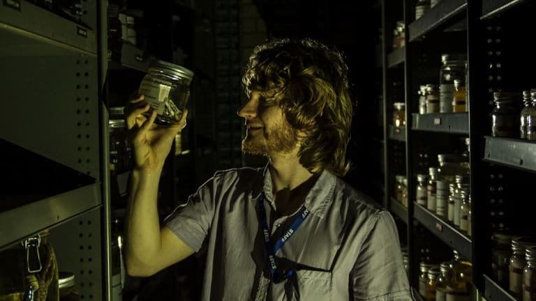 Stephen Mahony, a herpetologist at the Australian Museum, with a jar of a frog species named by another researcher in recognition of taxonomy work done Mr Mahony's father.