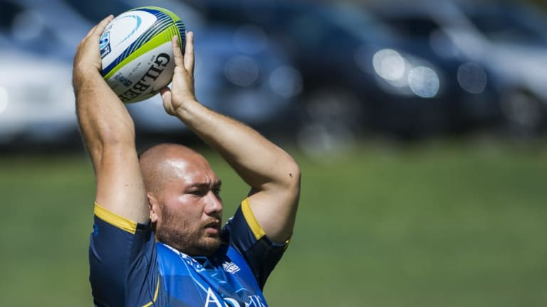 Helping hand: After a decade with Royals, Brumbies hooker Robbie Abel and his family have moved to Easts to help the struggling club get back on its feet.