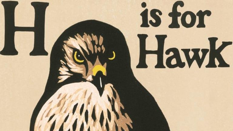 H Is for Hawk by Helen Macdonald.