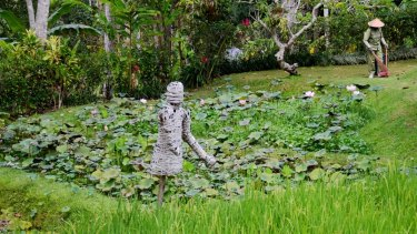 The couple visited rice paddy fields in Ubud while staying in a friend's villa in October.