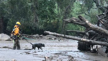 A rescuer and his dog search an affected area in Montecito. California on Tuesday.