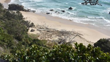 Beached grave for dead whale: Nobbys beach.