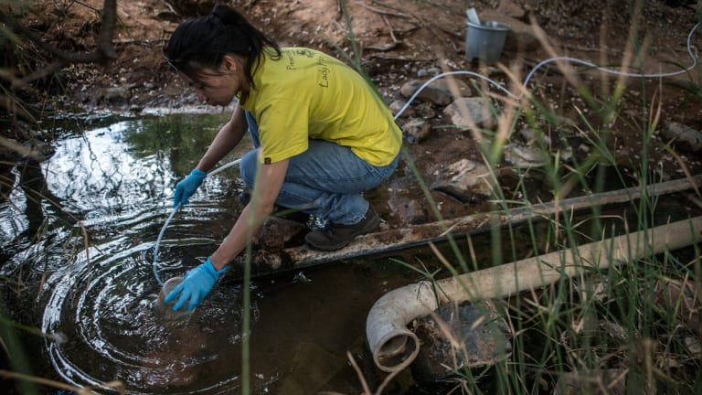 Researcher Maggie Lau takes samples from a spring in the Limpopo region of South Africa. Data she compiled revealed the role of methane in feeding a community of microbes.