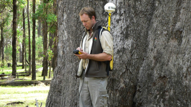 Metropolitan councils are employing environmental consultant Paul Barber to analyse tree canopy cover and land surface temperatures in their areas.