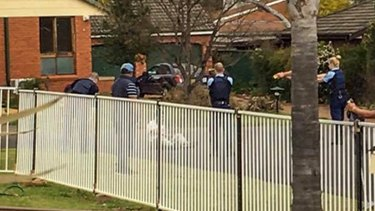 Armed police subdue Ihsas Khan after he allegedly stabbed Wayne Greenhalgh in Minto on Saturday.