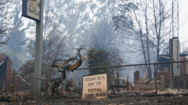 Marysville, the day after the 2009 bushfire.