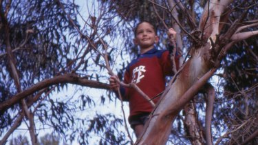 Andy Griffiths, aged 9, plays in a tree.