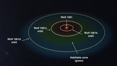 Wolf 1061 planetary system