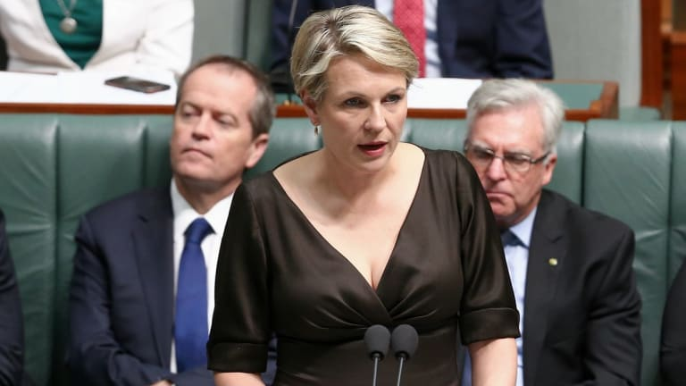 Deputy Opposition Leader Tanya Plibersek speaks during a motion for a stay of executions of Andrew Chan and Myuran Sukumaran, at Parliament House on Thursday.