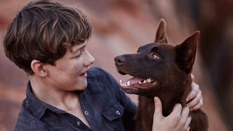 Levi Miller and Phoenix in <i>Red Dog: True Blue</i>.