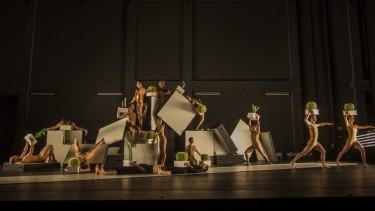 Sydney Dance Company presents Alexander Ekman's Cacti.