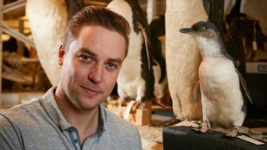 Monash University PhD candidate Travis Park is part of a team that has studied the evolution of penguins in Australia going back 38 million years.