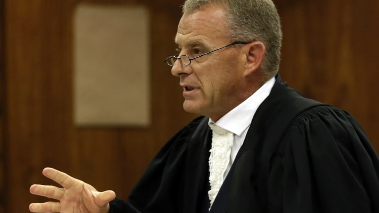 "Prosecutor Gerrie Nel has been accused of pursuing a ""personal vendetta"" against Pistorius."