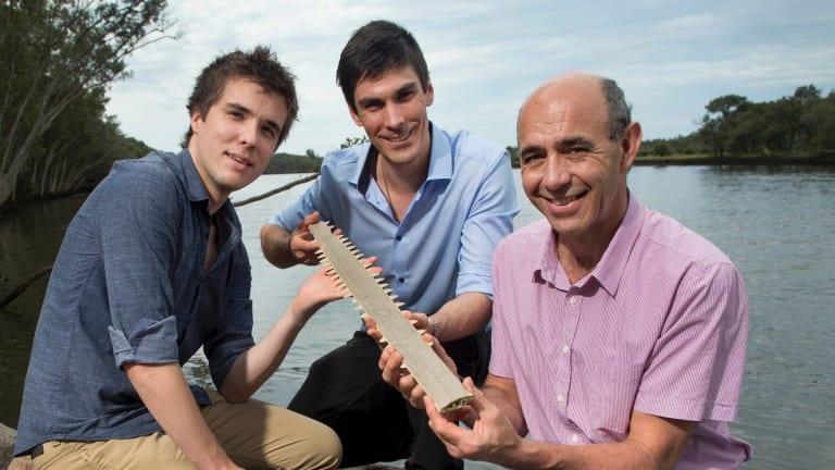 Newcastle University PhD student Sam Evans (left), David Bradney (centre) and Associate Professor Phil Clausen with the rostrum of a sawfish.