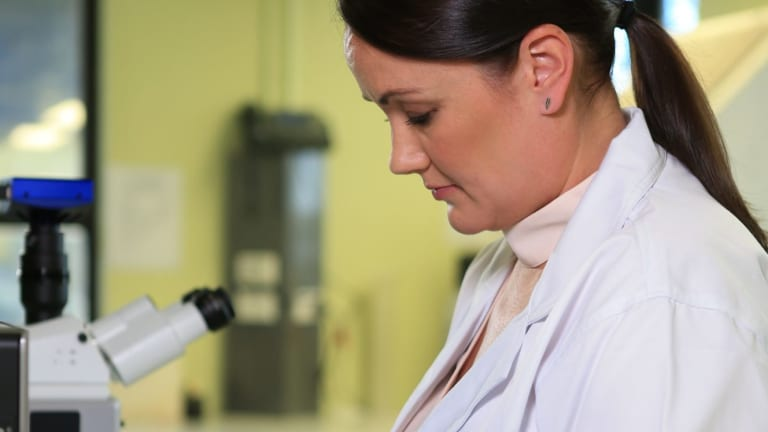 Angela Crean's research showed that males can adjust their sperm quality and quantity.