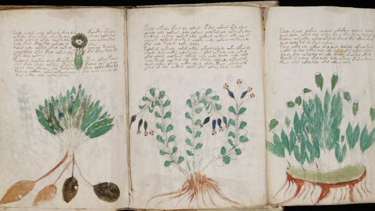 The 15th century Voynich manuscript has defeated the world's finest codebreakers. It's now being sold in replica form.