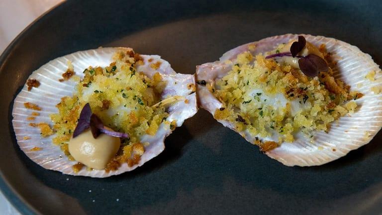 The grilled calamari, heirloom zucchini and pickled lemon.