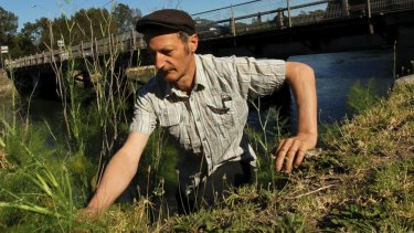 Diego Bonetto leads inner urban tours to forage for tasty weeds.