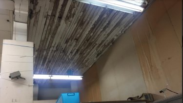 Poor condition of roof in the old Waltons Building in Brunswick Street Fortitude Valley.