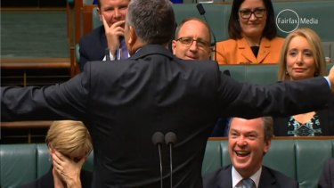 Julie Bishop reacts to Joe Hockey's comments in Parliament.