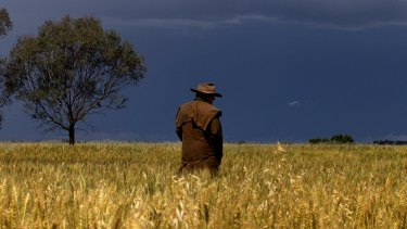 Farmers have been working round the clock to harvest their crops before the wild weather strikes.