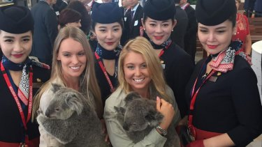 China East Airlines is beginning daily flights from Brisbane to to Shanghai.