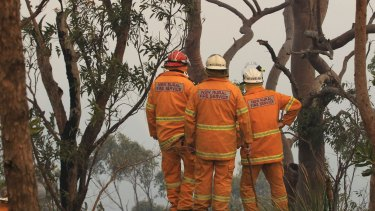 Firefighters prepare to head off a potential fire in the suburb of Alfords Point on Sunday.