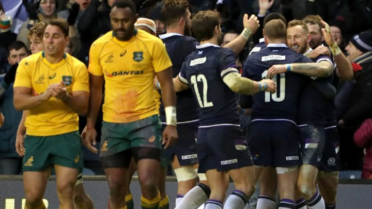 Pleasue and pain: Scotland celebrate their biggest win of the Wallabies.