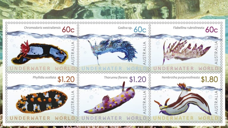 Nudibranch stamp series designed by Simone Sakinofsky at Australia Post.