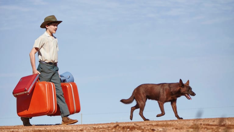 Levi Miller stars as Mick, the young boy who befriends a young kelpie, in <i>Red Dog: True Blue</i>.