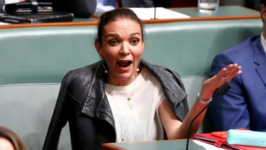 Anne Aly in Federal Parliament