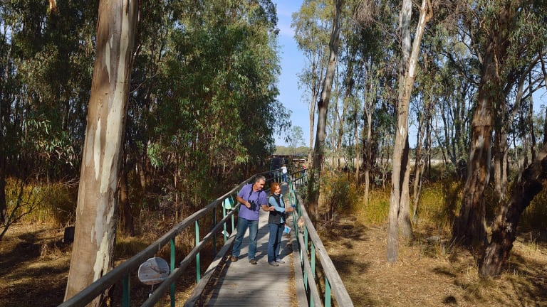 Visitors enjoy the Murray Valley National Park.
