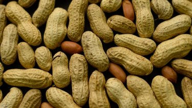 Peanuts are one of the most common food allergens.