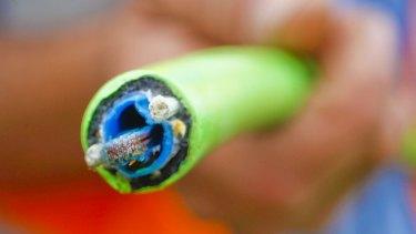 NBN Co's fibre-optic cables.