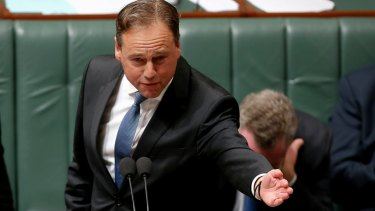 Environment Minister Greg Hunt during question time this week.