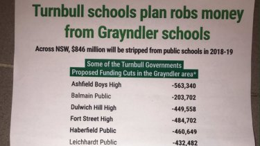 The leaflet that Greens say Senator Lee Rhiannon sent to NSW constituents.