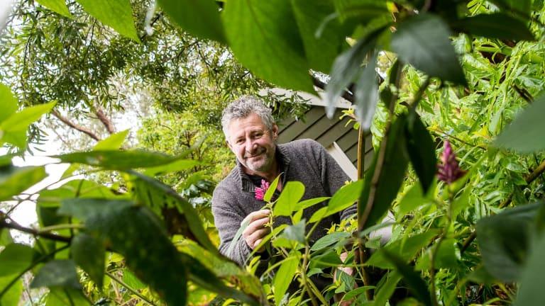Plant collector Stephen Ryan in his garden in Mount Macedon.