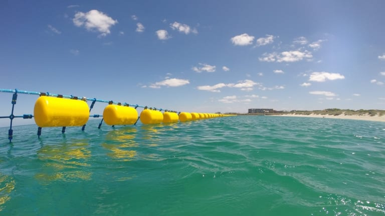 The Eco Shark Barrier in operation at Coogee Beach, Western Australia.