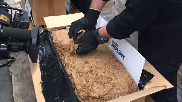 Customs officers sort through some of the 71-tonnes of illicit tobacco they seized in June, 2015