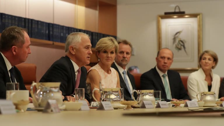 Political class: 42 per cent of Malcolm Turnbull's cabinet ministers have been employed as political staffers and party officials.